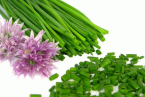 Chives Health benefits and uses